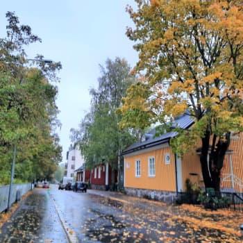 Många drömmer om att bo i mysiga Trä-Kottby – men livet i ett hundra år gammalt trähus kräver tid, pengar och energi