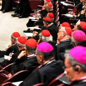 """Pedofiliaskandaalit likaavat katolisen kirkon maineen: """"Jäsenkatoa näkyy"""""""