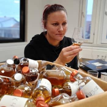 Mari Saarenpää on harvinainen alallaan maailmassa - maistaa viskistä aromeja: vaniljaa, ruista, puuta
