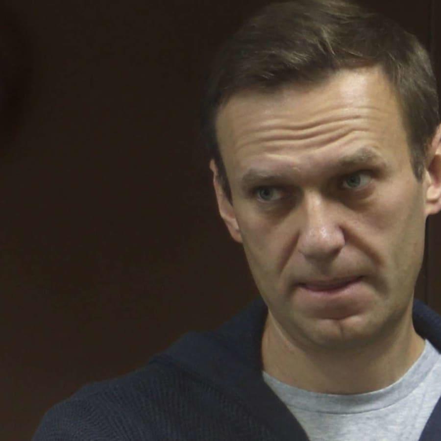 Nobelpristagare, musiker och skådespelare står upp för Navalnyj
