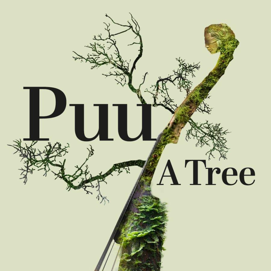 Puu - A Tree