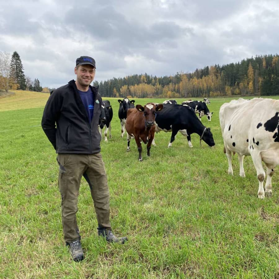 Borde kor få gå ute och beta?