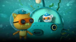 Oktonauterna och flikfiskarna
