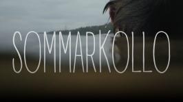 Avsnitt 7: Sommarkollo (7)