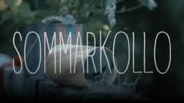 Avsnitt 9: Sommarkollo (7)
