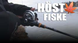 Hajbo testar: Fiske: Höstfiske