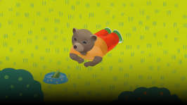 Lilla bruna björnen