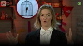 BUU-Lisa: Lisas och Vincents pingvinskola