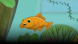 Guldfisken