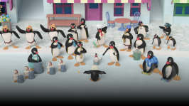 Pingu dirigerar