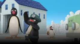 Pingu dirigerar trafiken