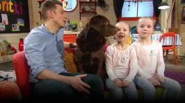 Lilli, Nana och hypohunden Pepe