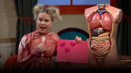 Muskel-Malins hjärta
