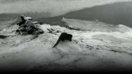 Avsnitt 4: Fisk under isen