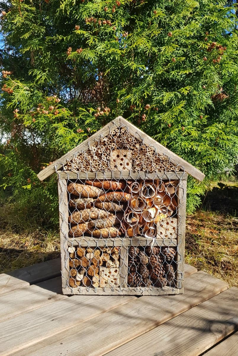 Kävyillä, tuohella ja rei'itetyillä puunpalasilla täytetty hyönteishotelli.