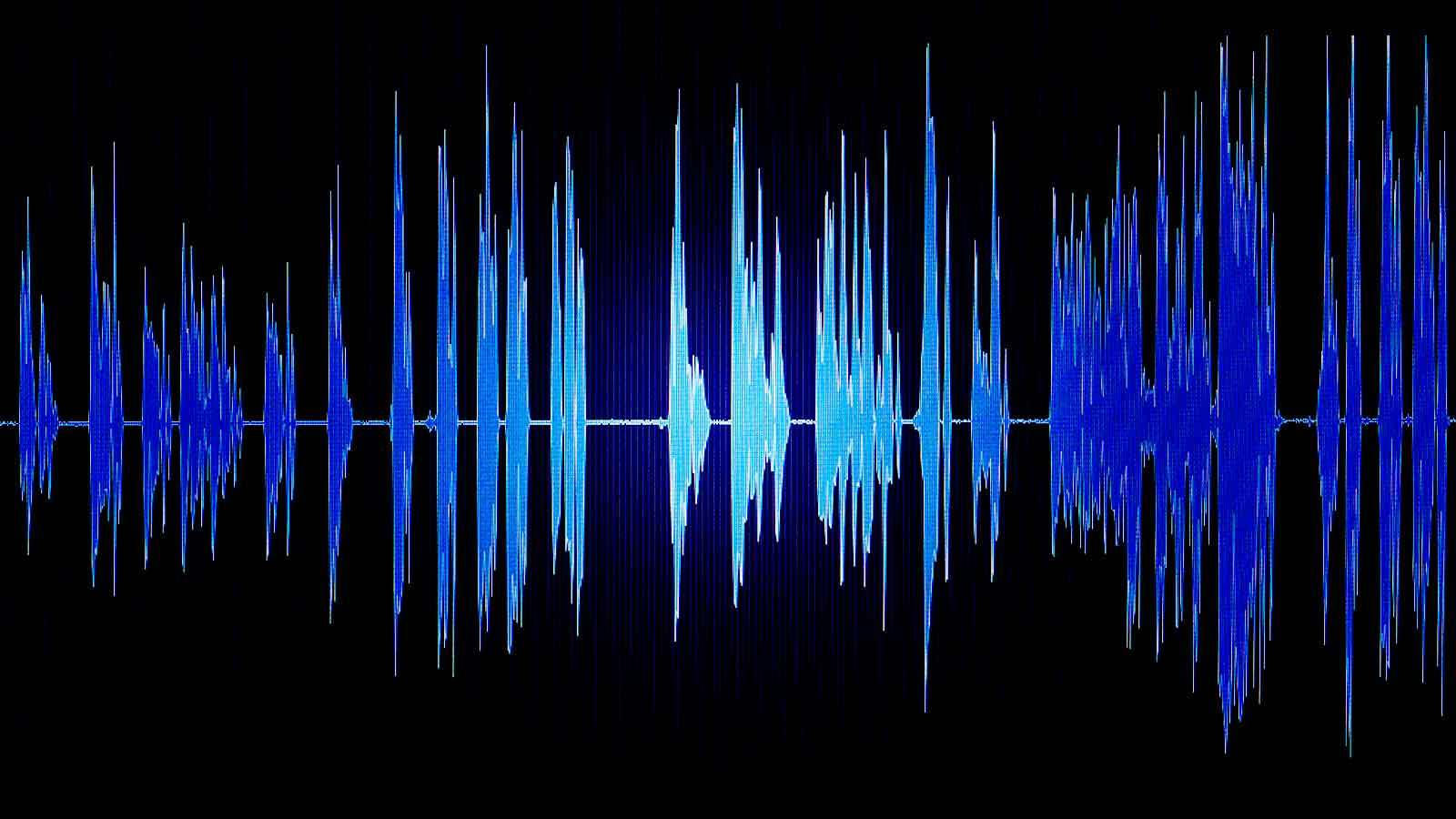 Äänikäyrä tietokoneen ruudulla