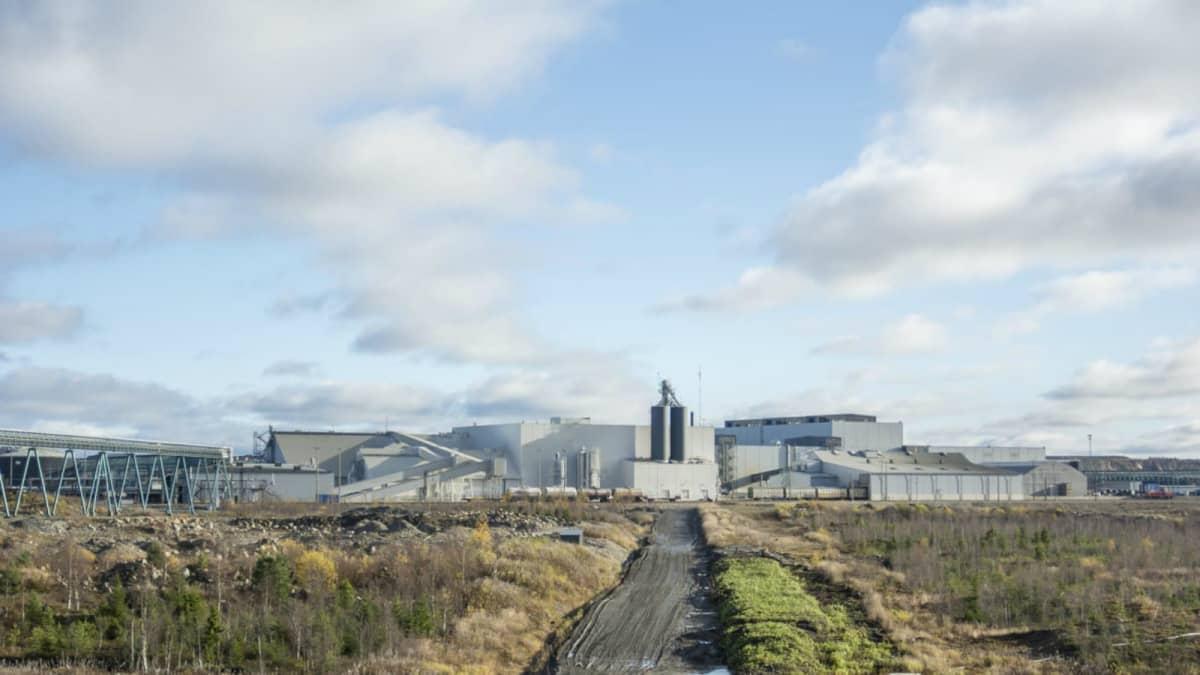 Kaivosyhtiö Terrafamen tehdasalue