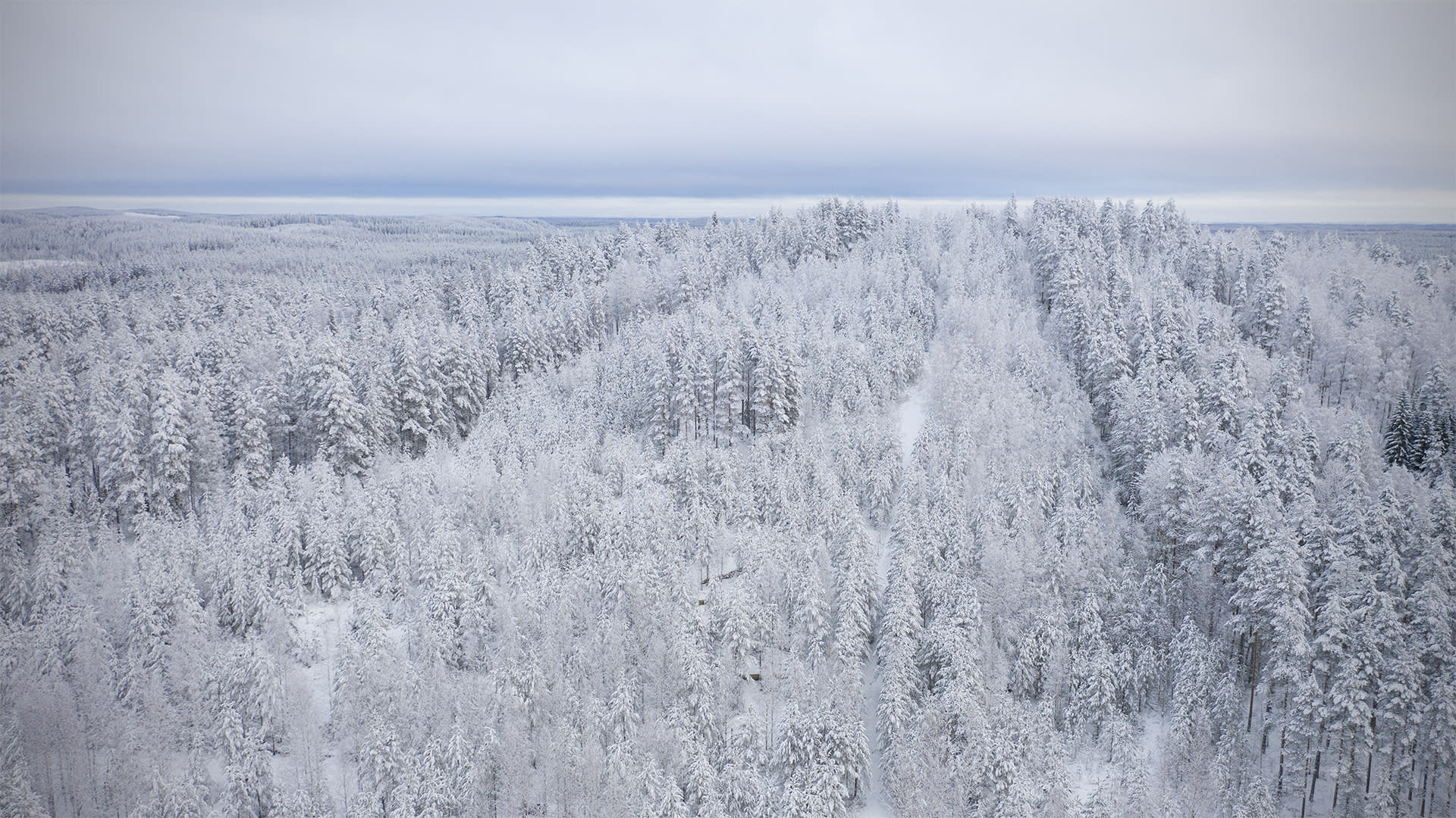 Ilmakuva lumisesta Pärnävaarasta.