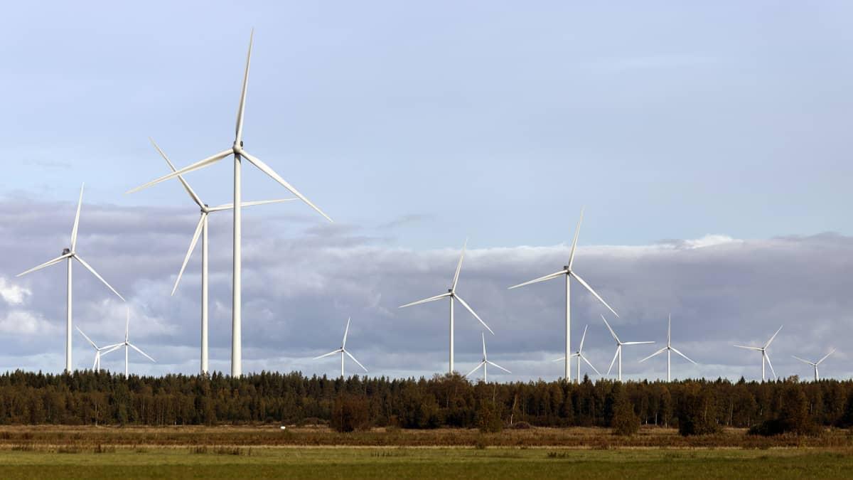 Tuulivoimalapuisto Kalajoen Mustilansuolla