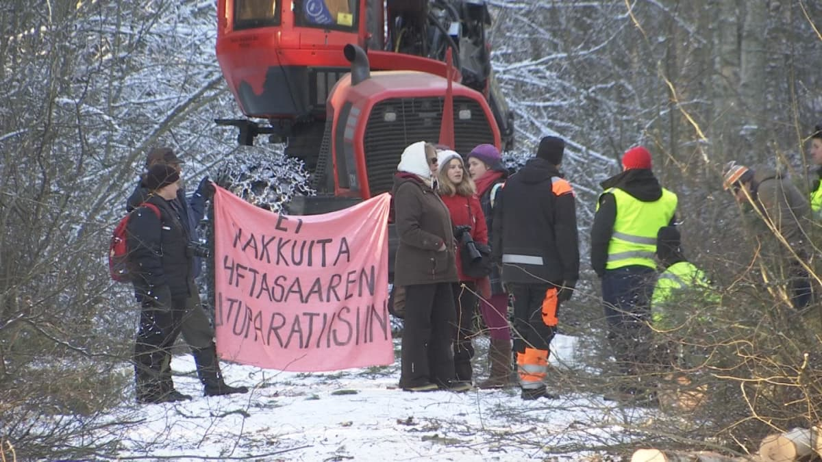 Mielenosoitus Hietasaaren hakkuita vastaan