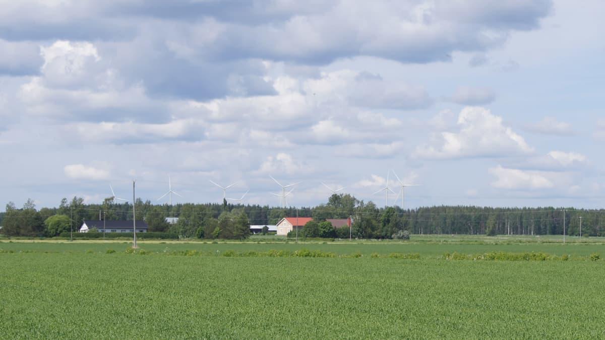 WPD Finlandin kuvamallinnus Ilmajoken Oksivuorelle suunnitelluista tuulivoimaloista.