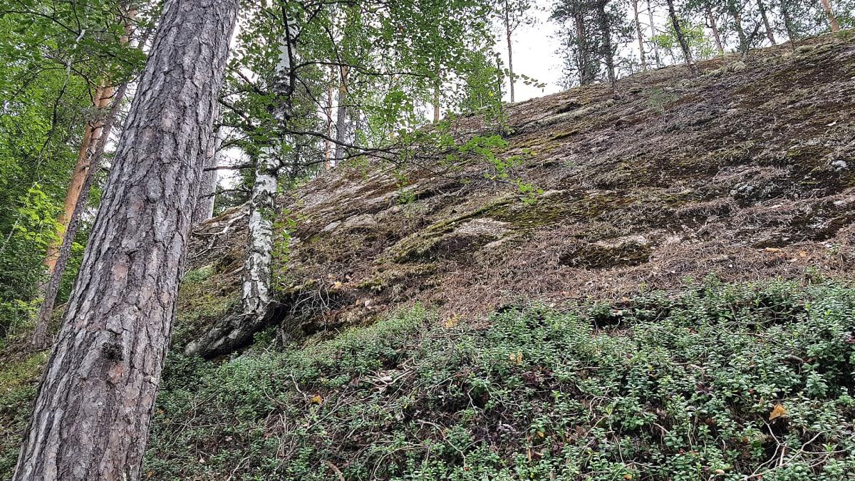 Haarikon kansallispuisto