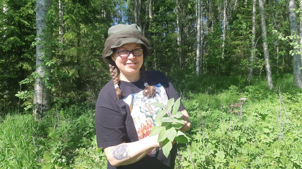 Luonnontuoteneuvoja Annuka Ovaska etsii kesäisestä metsästä luonnonyrttejä, kuvassa käsissä on vuohenputkia.