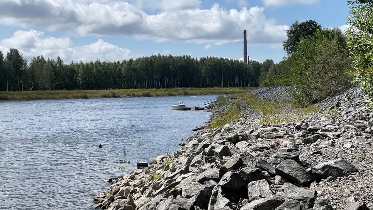 Porissa on rakennettu tulvapatoja Kokemäenjoen rannalle.