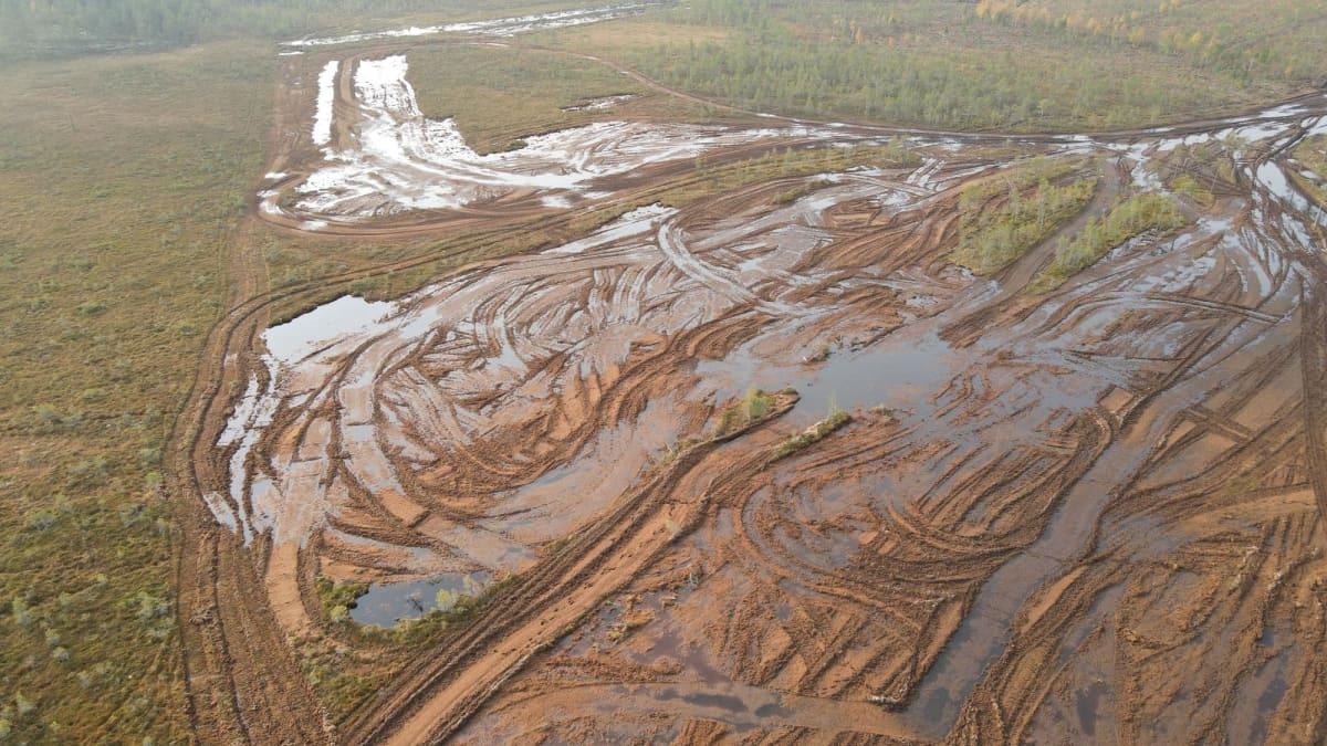 Sarvinevan suo, josta on kuorittu rahkasammalta