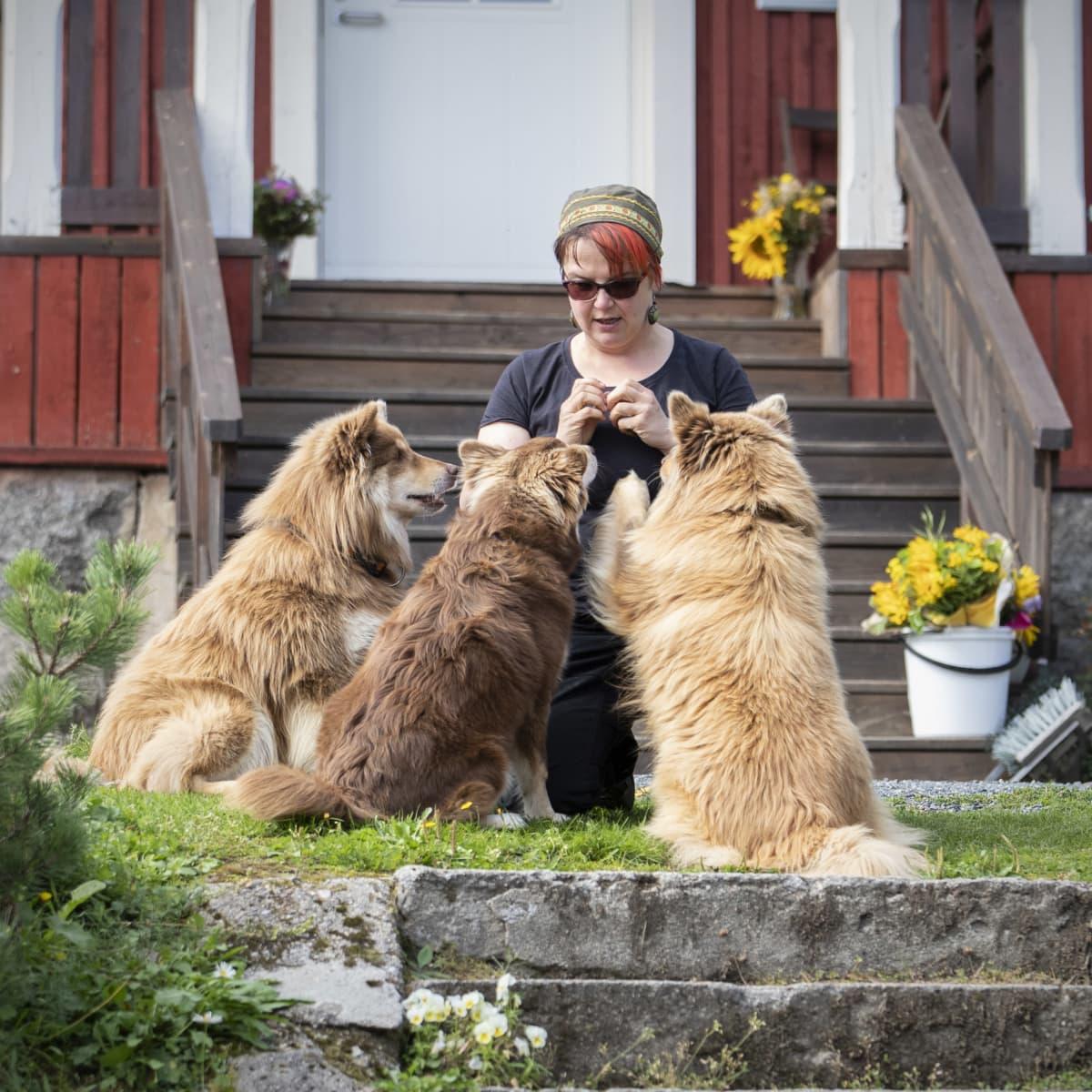 Möhkön Mantan yrittäjä Tuija Lauronen koiriensa kanssa majatalon edustalla.