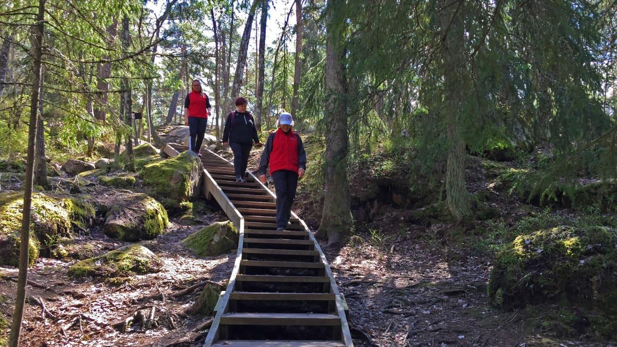 Naiset kävelevät alas kuntoportaita metsässä