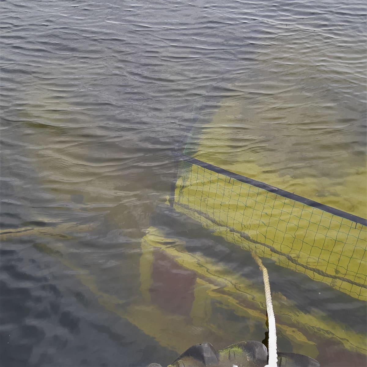 Lotja häämöttää veden alla.