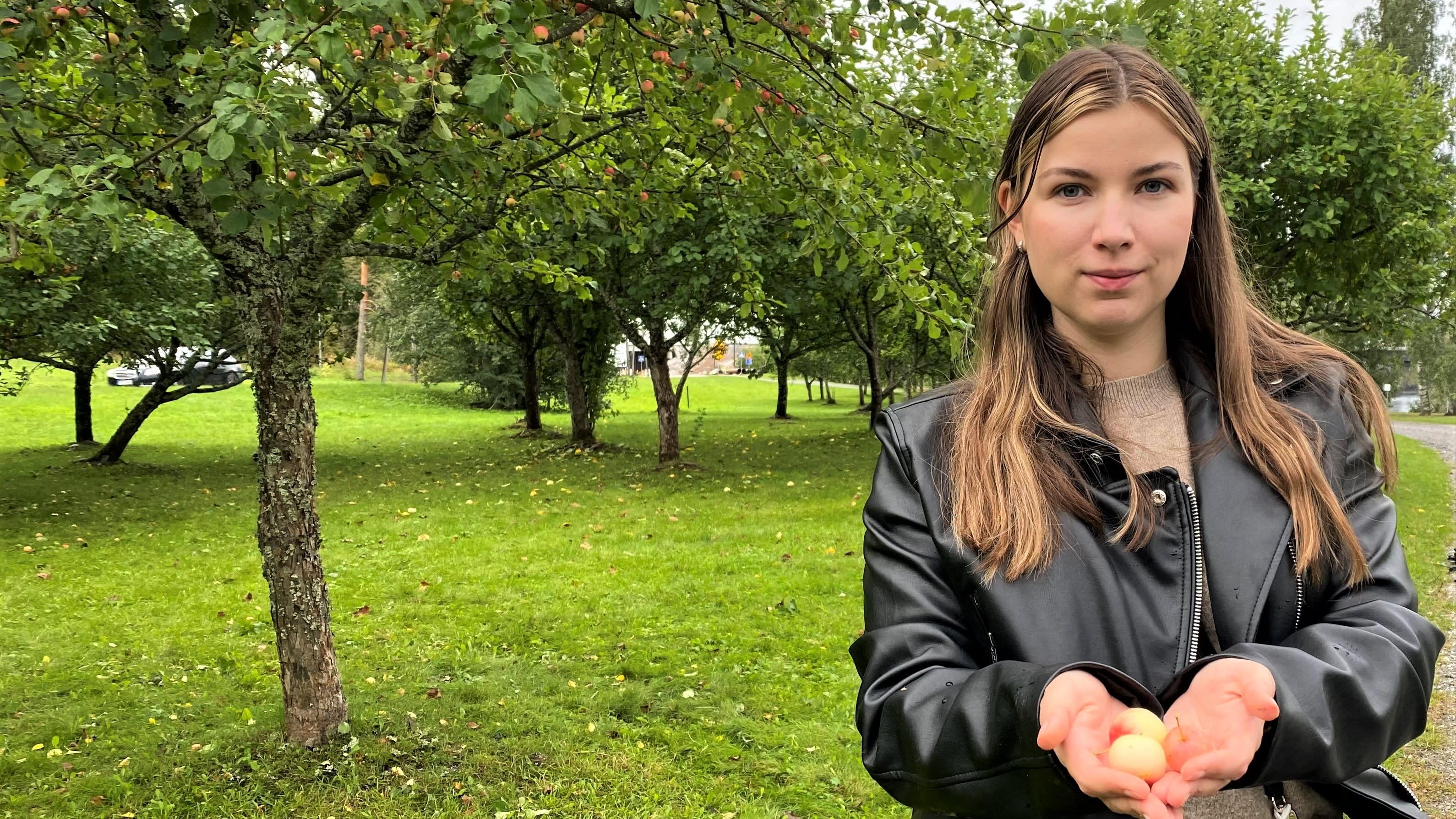 Olga Salmen lapsi sai oman päärynäpuun omenatarhasta