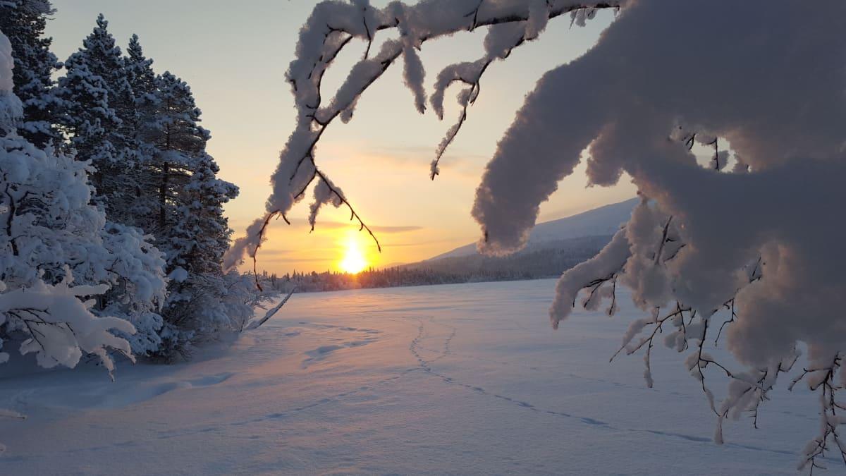 Aurinko näyttäytyy Pallaskeron takaa.