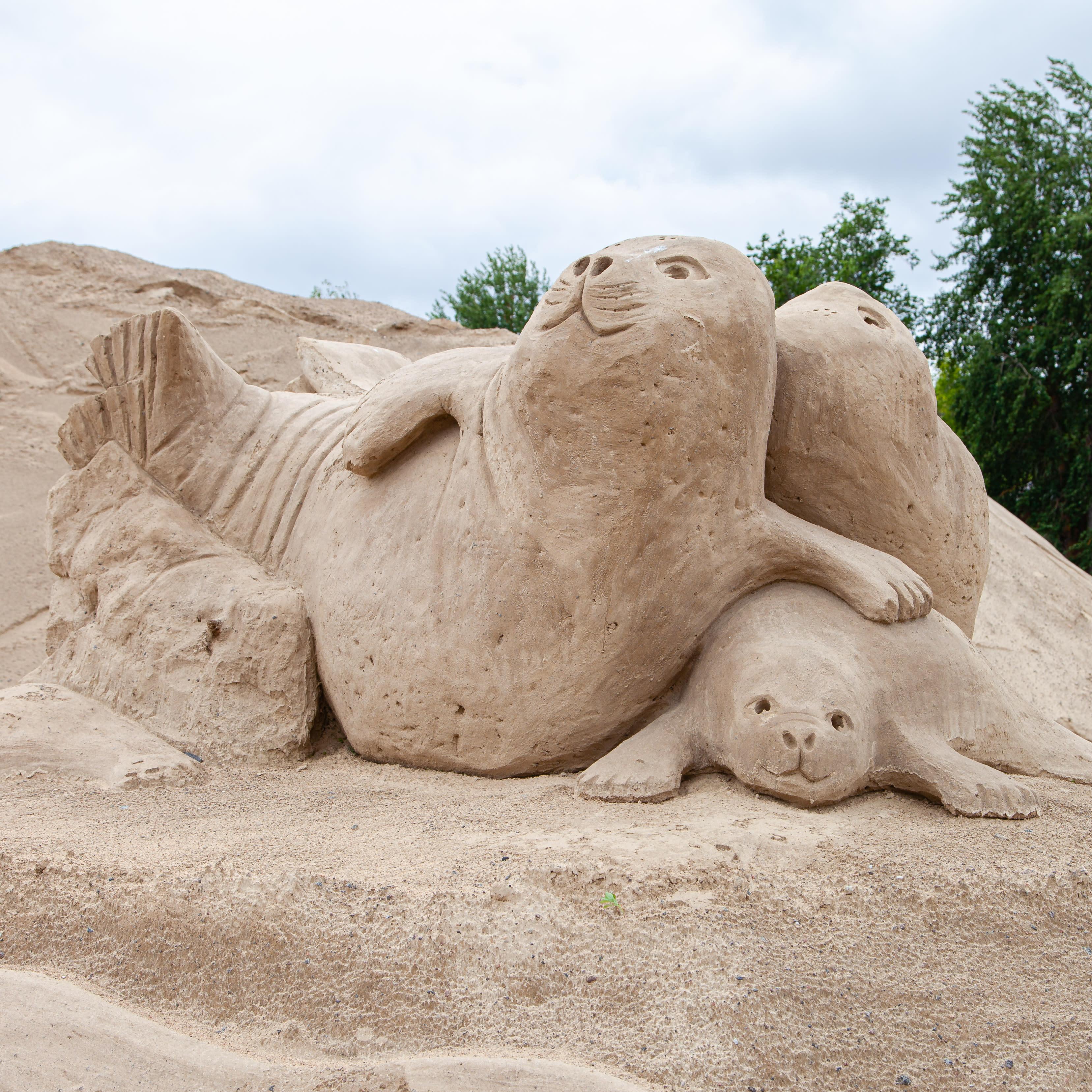 Lappeenrannan hiekkalinna 2020. Saimaannorppia.