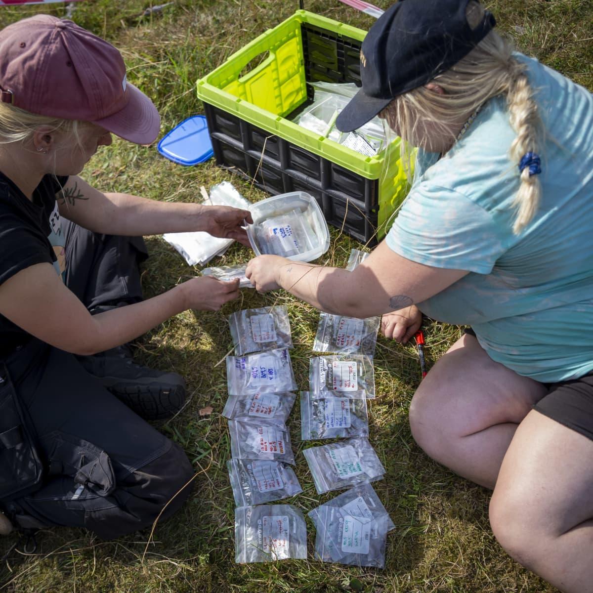 Henkilöt järjestelevät arkeologisia näytepusseja.