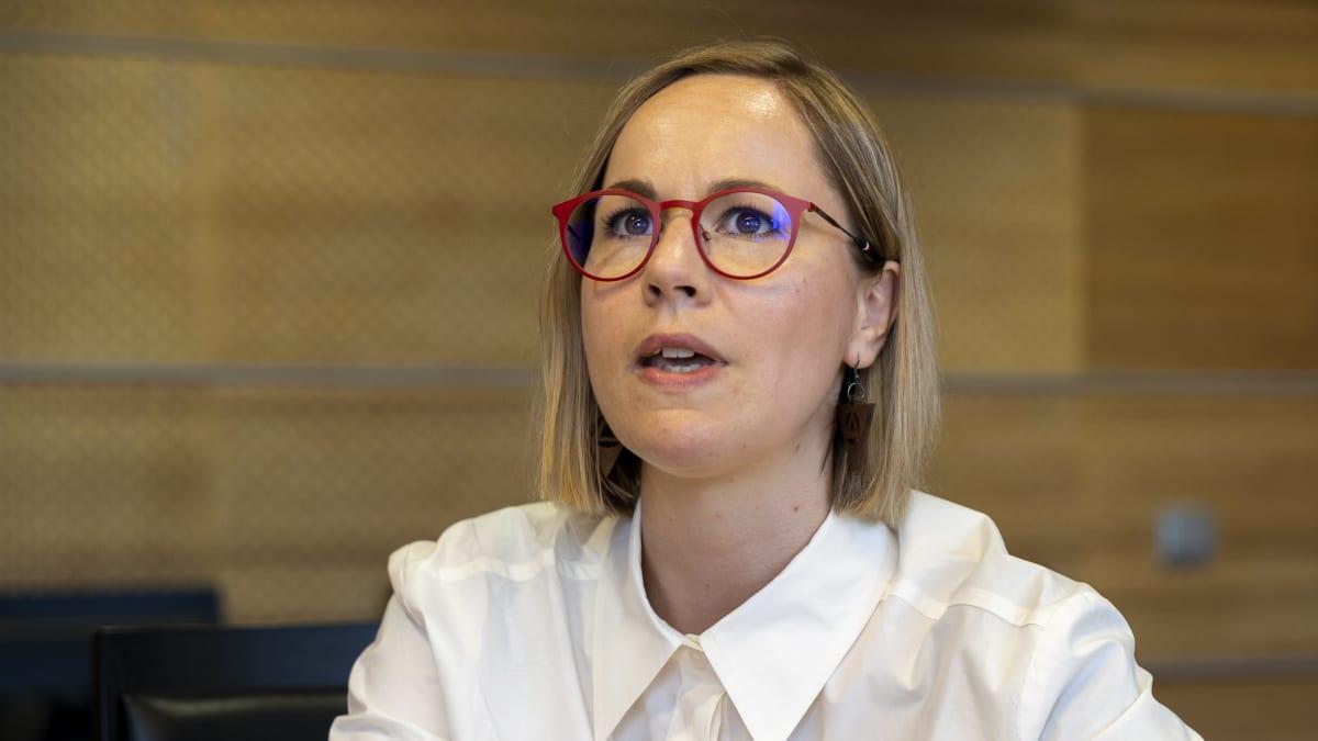 Hanna Sarkkinen, sosiaali- ja terveysministeri, Vasemmistoliiton kansanedustaja