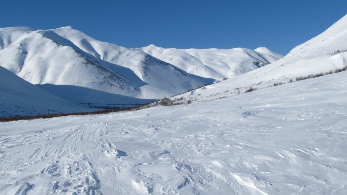 Luminen maisema Alaskassa