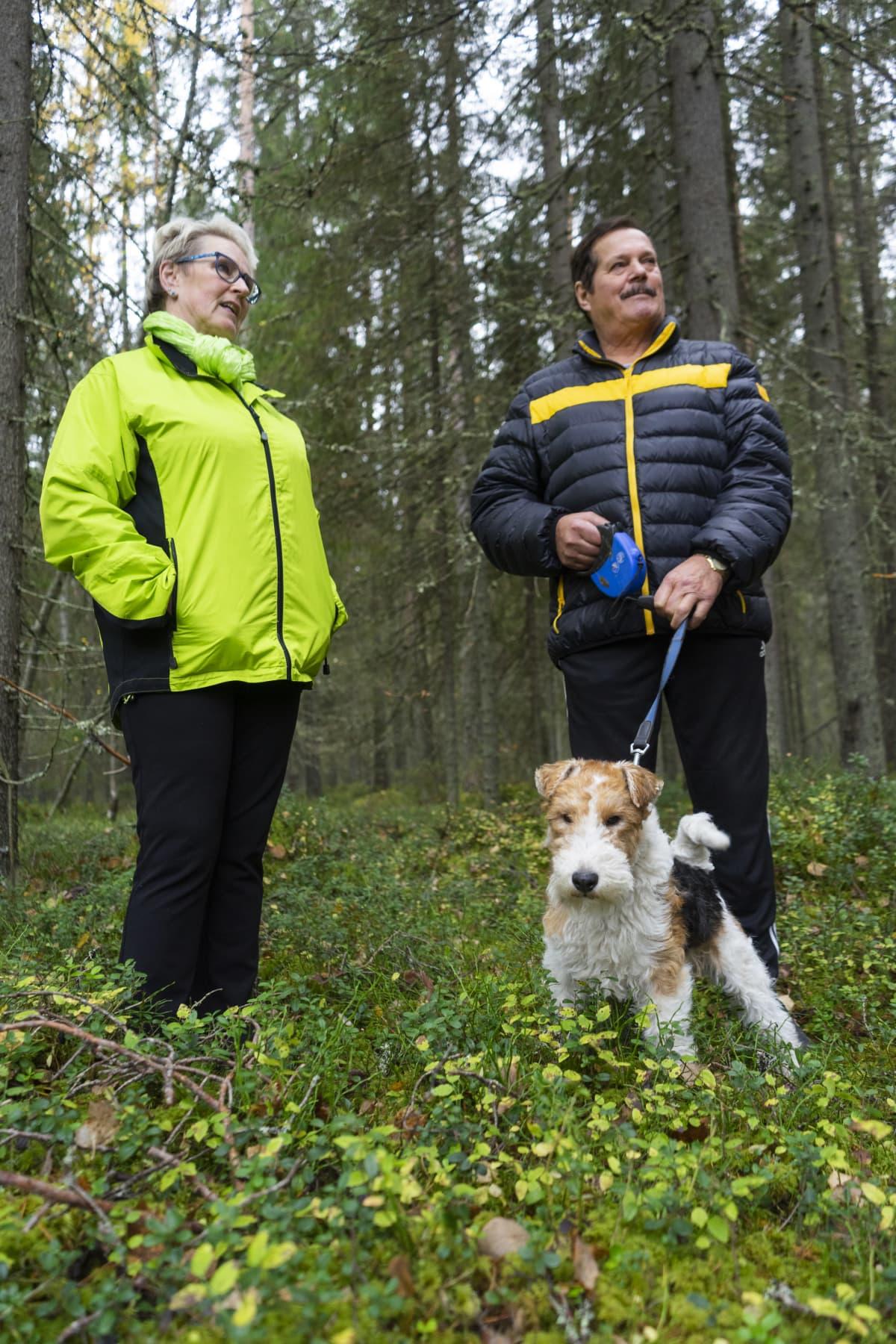 Eila ja Jussi Aavakare koiran kanssa kuusimetsässä