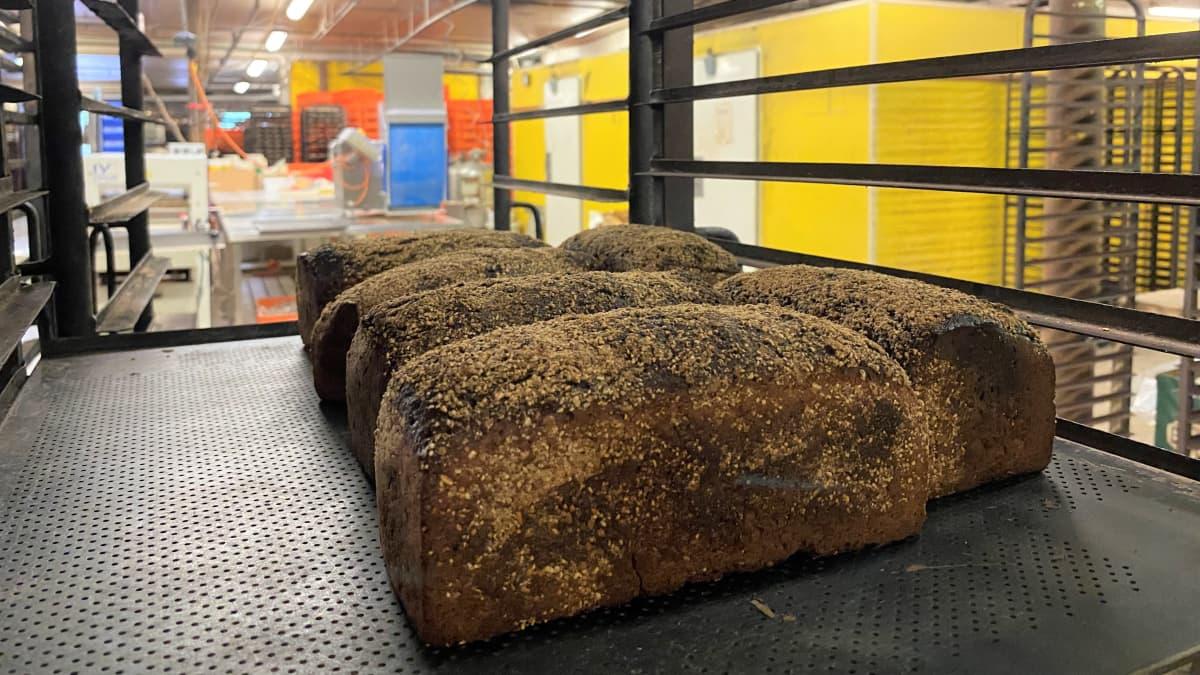 Leipomossa leipiä paistokärryssä