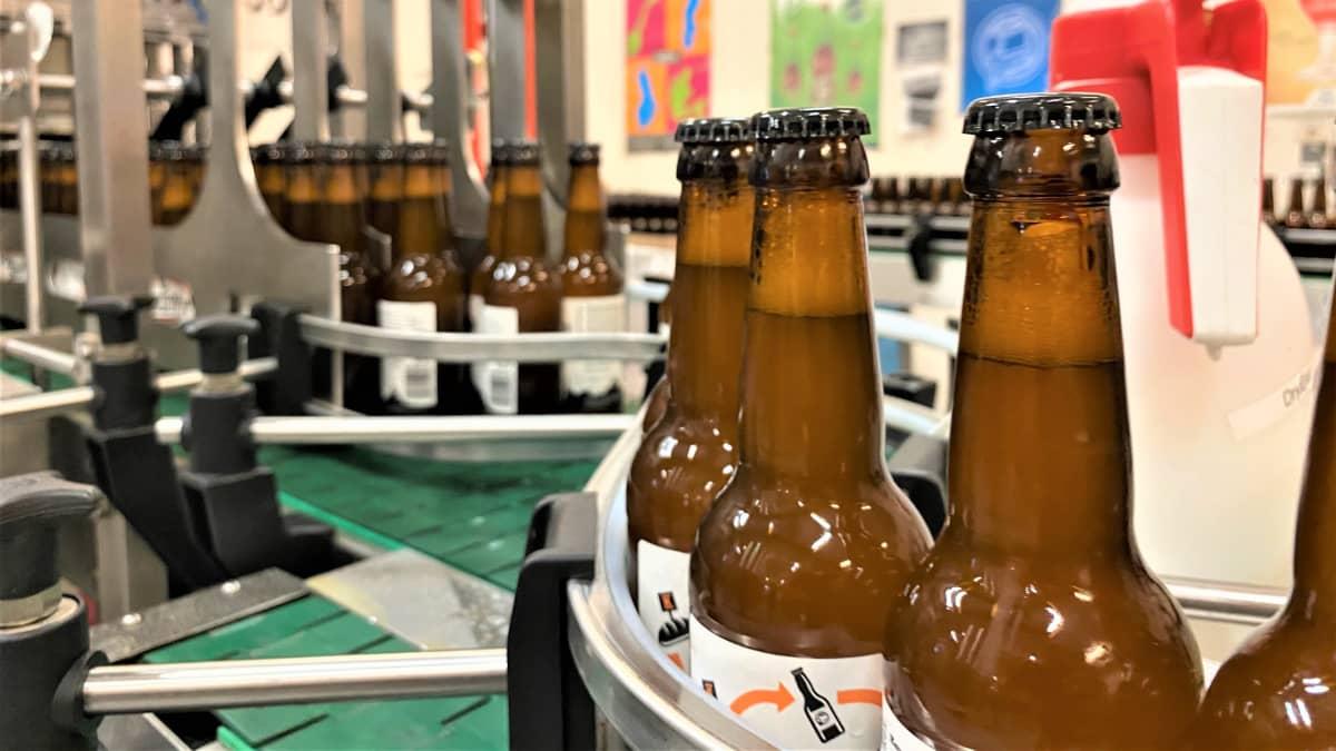 Olutpulloja tehtaan hihnalla pullotuskoneessa