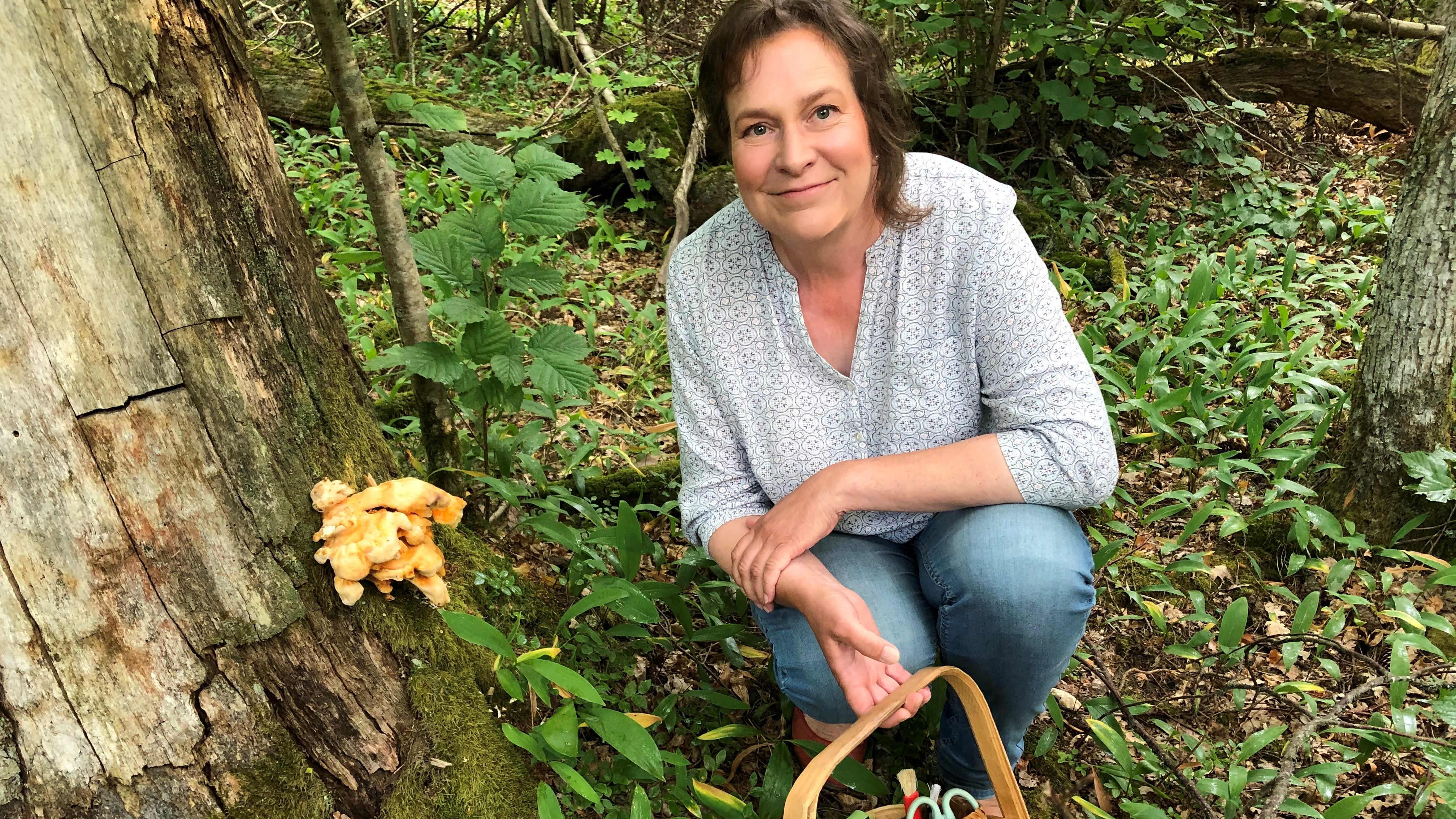 Sienisadossa on suuria paikallisia eroja