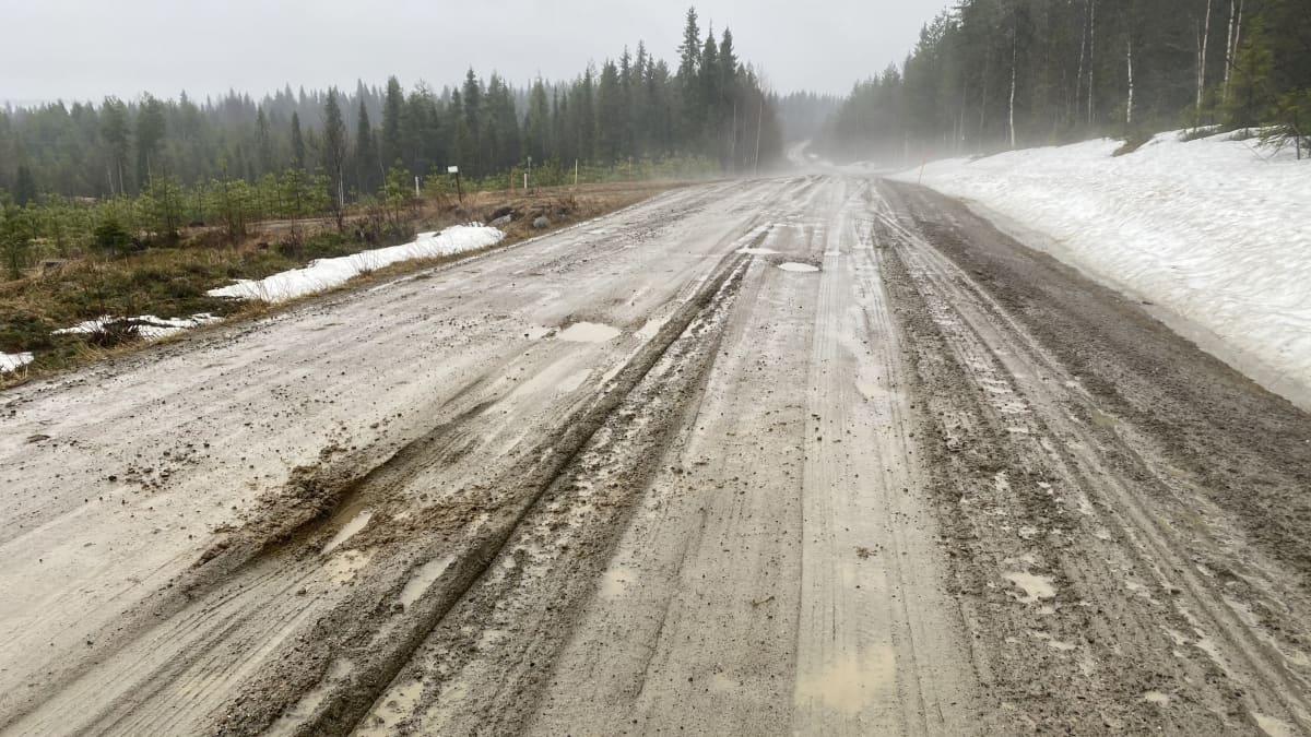 Kelirikko Kuusamon Riekintiellä toukokuussa 2021.