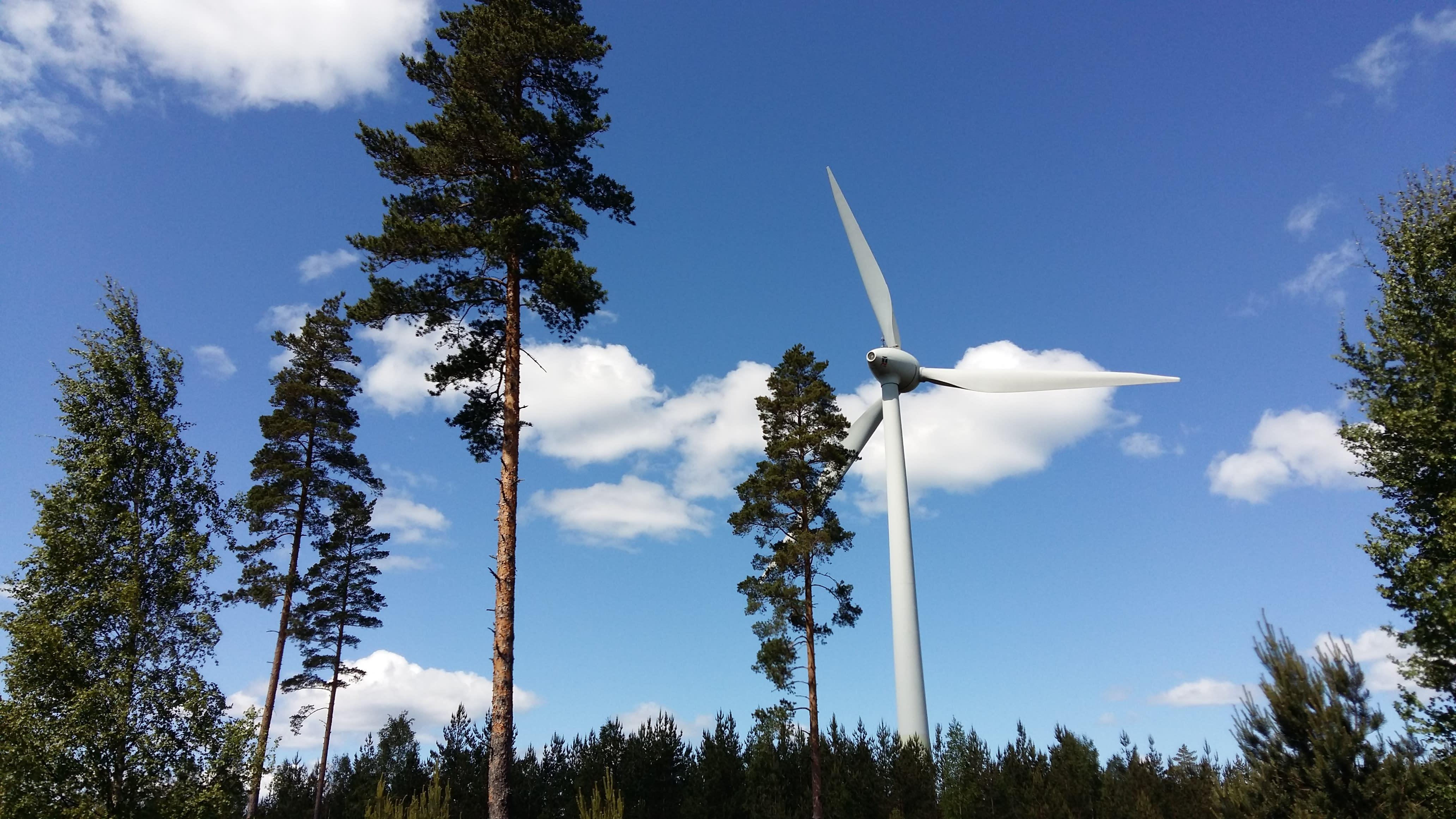 Tuulivoimala metsässä