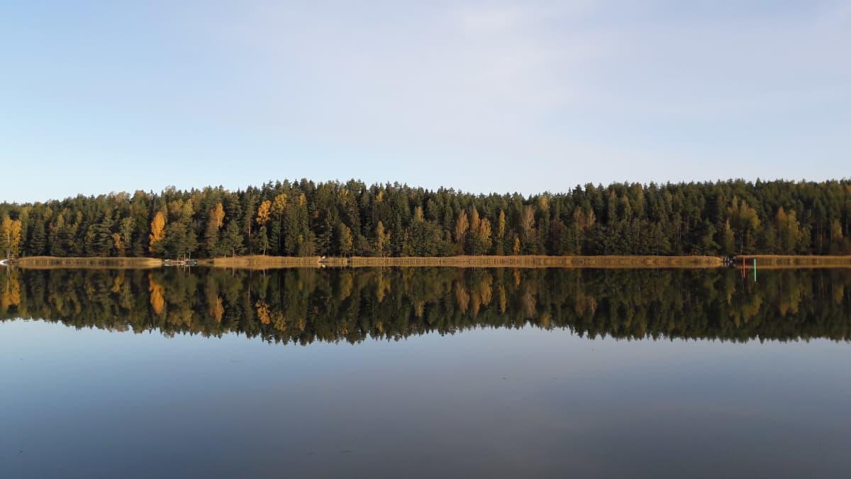 Puut heijastuvat veteen Norrlångvikenissa Kemiönsaarella.