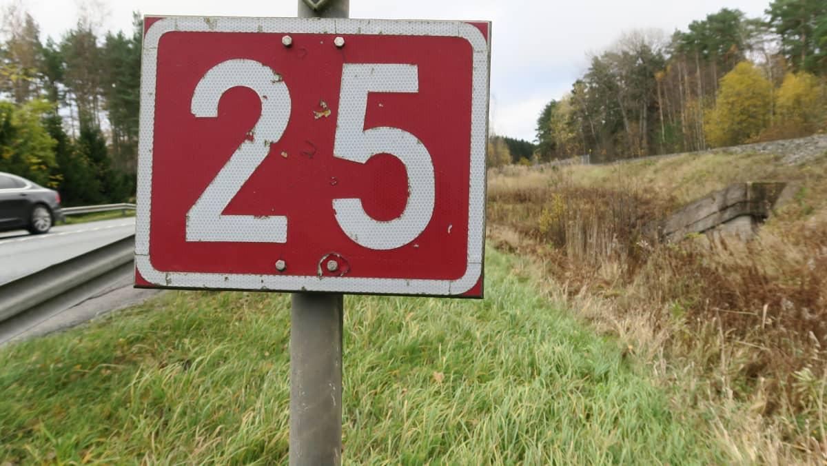 Valtatien numero 25 punavalkoinen kyltti tien varressa Tammisaaressa.