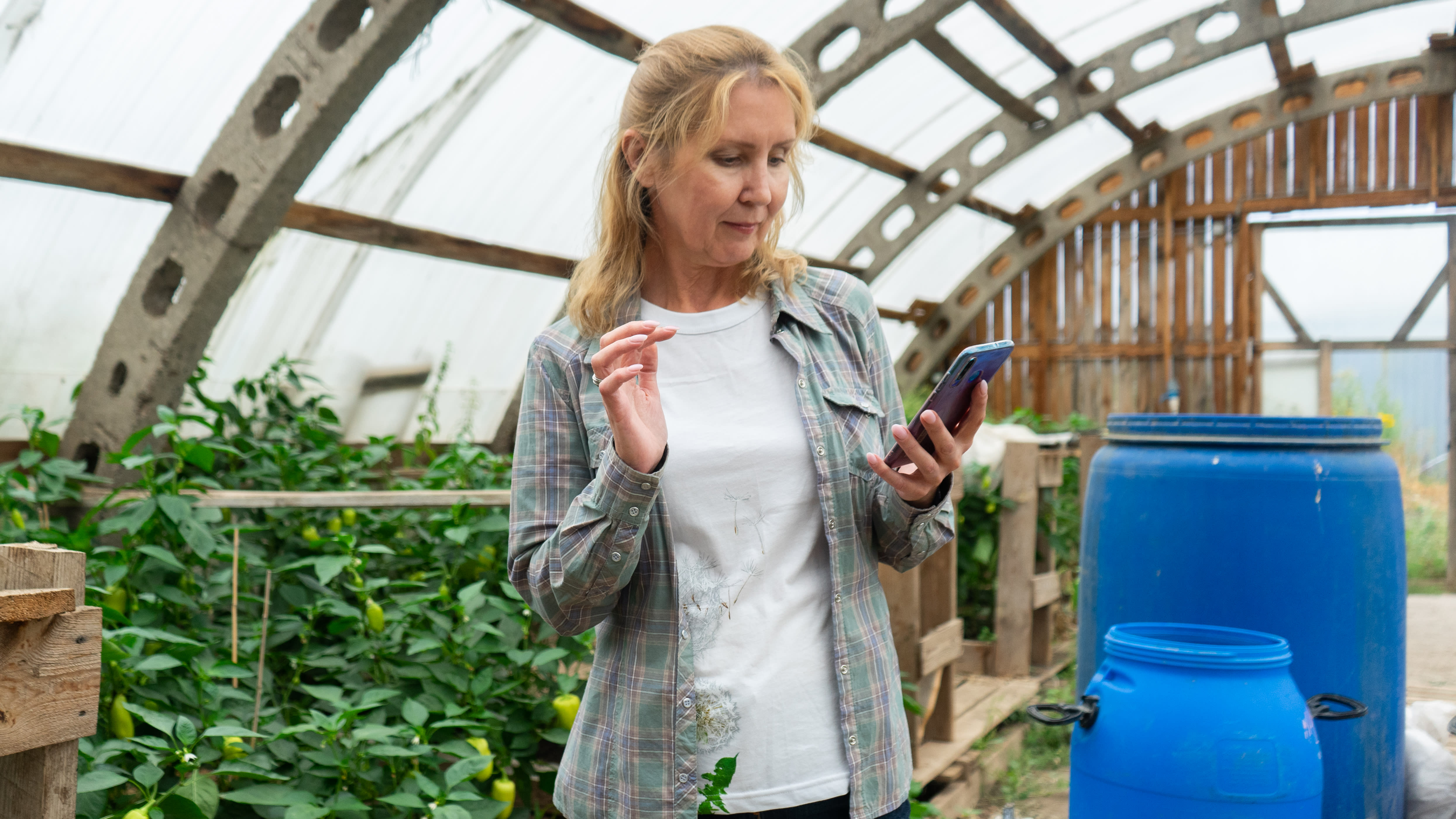 Nainen katsoo kännykkäänsä kasvihuoneessa.