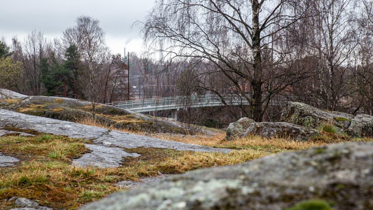 Saimaanpuistikko Helsingin Alppiharjussa.