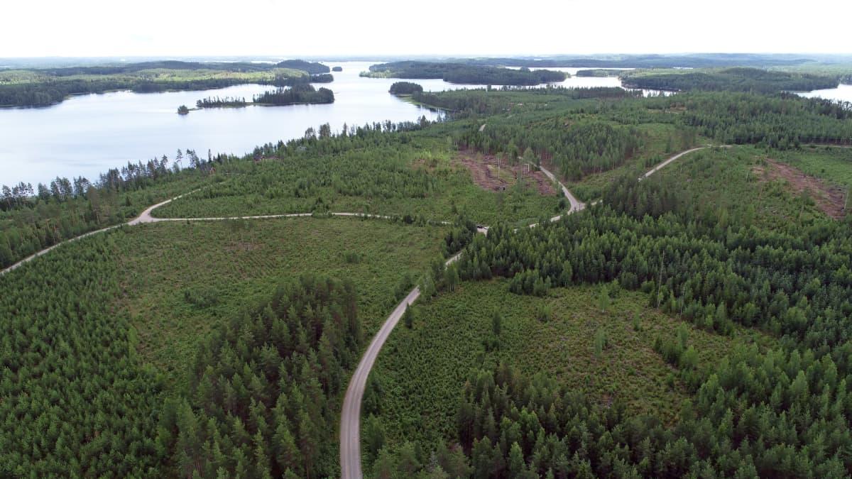 Ilmakuva alueesta Sulkavalla, jossa Asta-myrsky teki tuhoja kymmenen vuotta sitten.