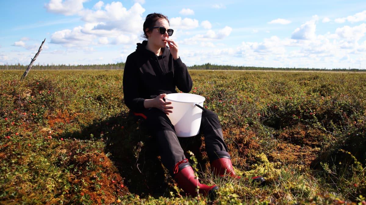 Jade Ekorre pitää taukoa hillanpoiminnasta Tervolan suolla